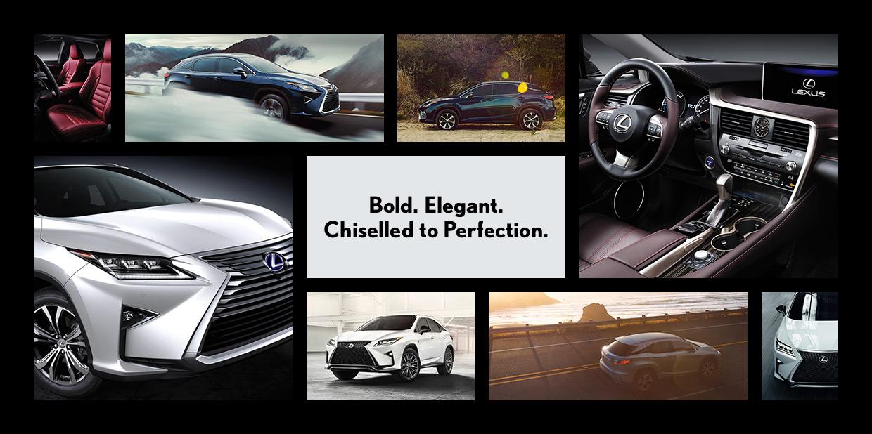 Bold, elegant,chiseled to perfection